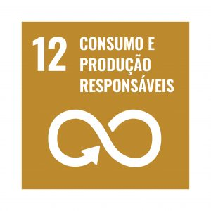 Logo OSD Consumo e produção responsavel